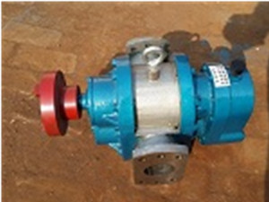 LCB天博国际官方高粘度罗茨泵